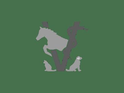 logo_tierarzt_michel